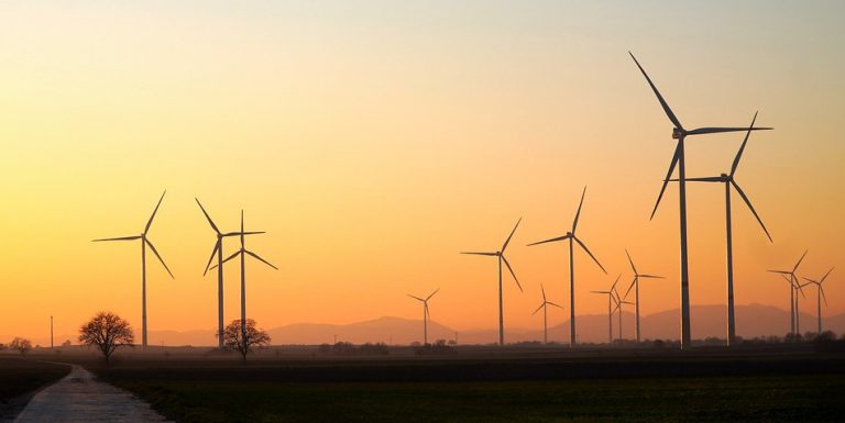 Wind turbines seen on the horizon.