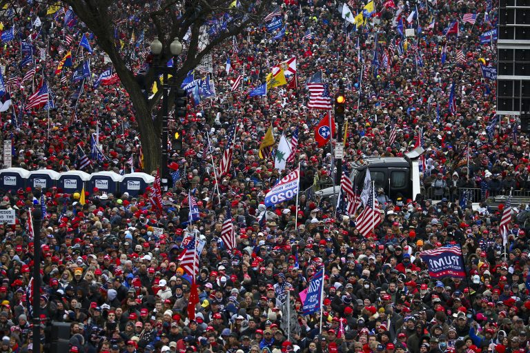 """Huge Crowds gather for the """"Stop the Steal"""" rally on January 06, 2021 in Washington, DC. (Image:Tasos Katopodis/Getty Images)"""