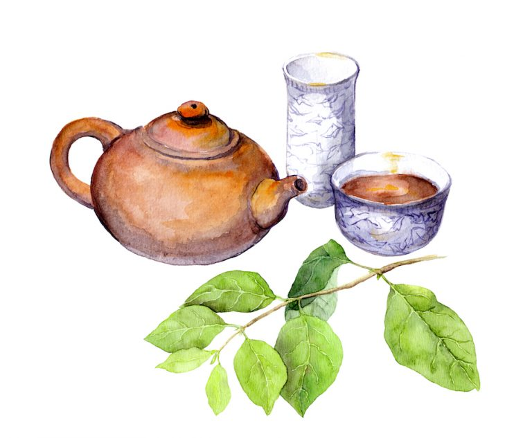 watercolour painting of traditional chinese tea pot, green leaves from tree and cup of tea