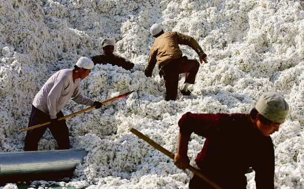 Migrants work at a cotton factory on October 15, 2005 in Shihezi city of Xinjiang Province. Uyghurs have been sold on the Chinese version of Google, Baidu, in batches of 50 to 100 to perform cheap and/or free labor.