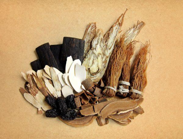 ingredienti medicina tradizionale cinese