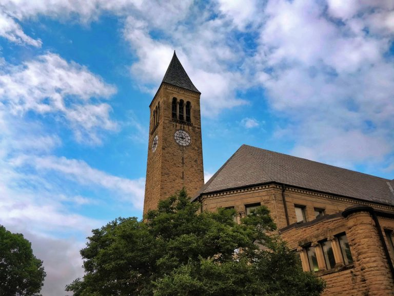 Cornell University has approved a dual-degree partnership with a Chinese university despite criticism from several faculty members and students about Beijing's persistent and atrocious human rights violations.