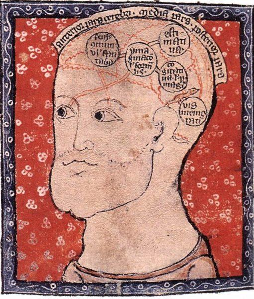 rappresentazione antica cervello