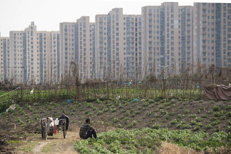 china-agriculture-food-shortages_shanghai_farm