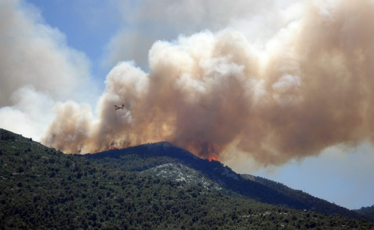 Wildfires have burned through 1.5 million acres of land in the U.S. this year.