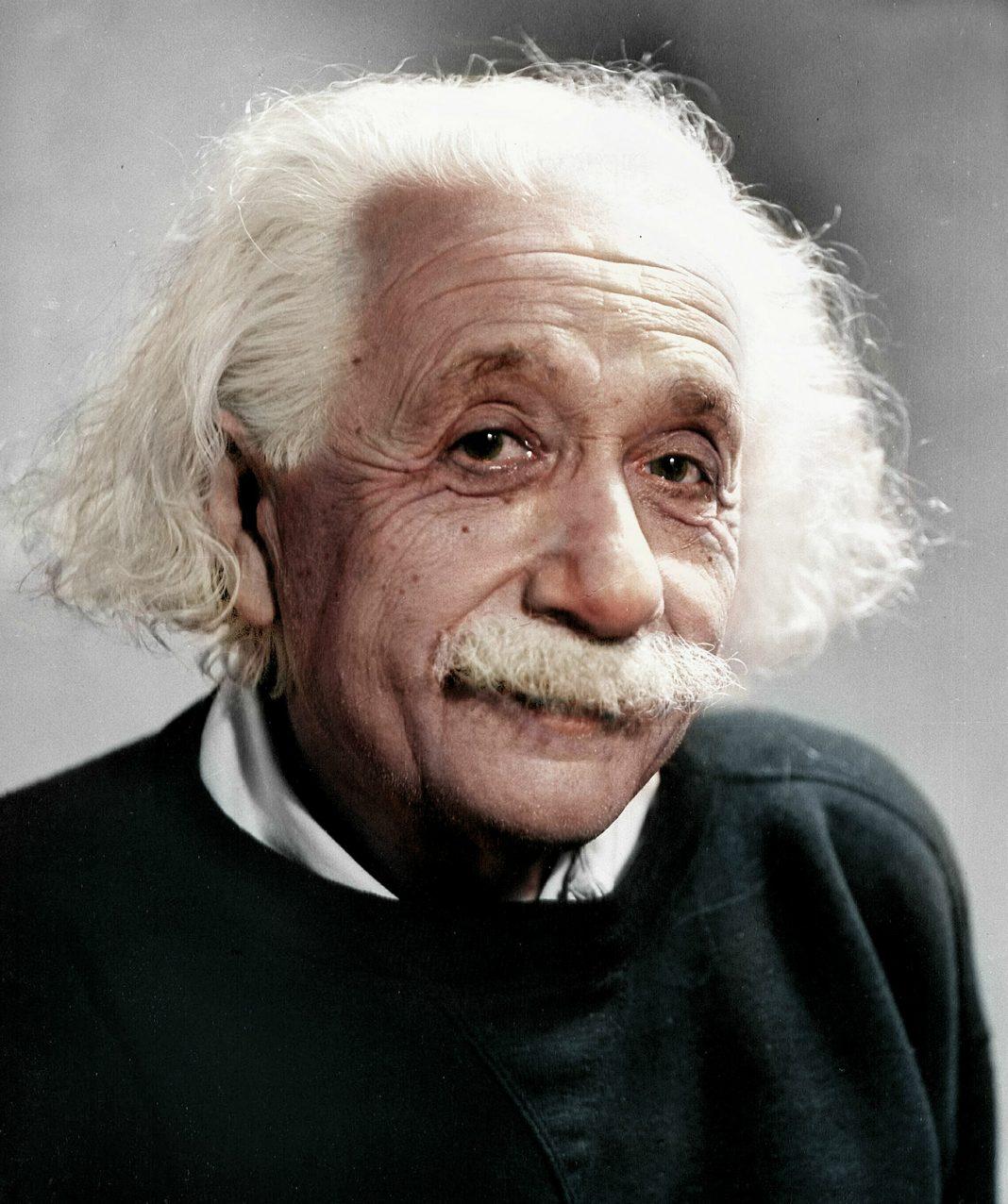 Albert Einstein, sempre aperto a nuove idee, suggerì lo studio degli uccelli migratori e delle api per capire le loro modalità di navigazione. (Immagine: Wikimedia Commons CC SA-4.0)