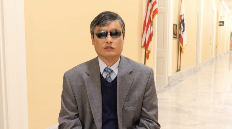 ChenGuangcheng_VisionTimes_Chinese-edition