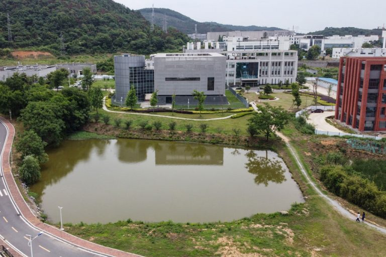 """This aerial view shows the P4 laboratory (C) on the campus of the Wuhan Institute of Virology in Wuhan on May 13, 2020. A study by Dr. Steven Quay found early virological samples from COVID-19 patients that were sequenced and referenced by WIV researcher Shi """"Batwoman"""" Zhengli, contained heavy contamination, including Nipah Virus and an undisclosed H7N9 Influenza vaccine."""