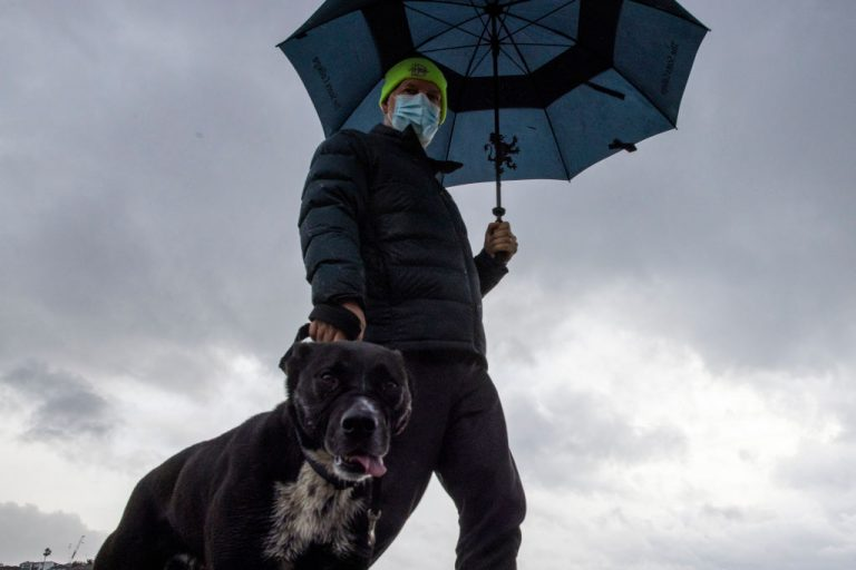 A man walks his dog at Bronte Beach on July 10, 2021 in Sydney, Australia. Bourke Shire Council ordered the euthanization of 16 rescue dogs at the local pound in order to prevent staff from a shelter from attending the premises to retrieve them amid the country's increasingly aggressive approach to COVID-19 measures.