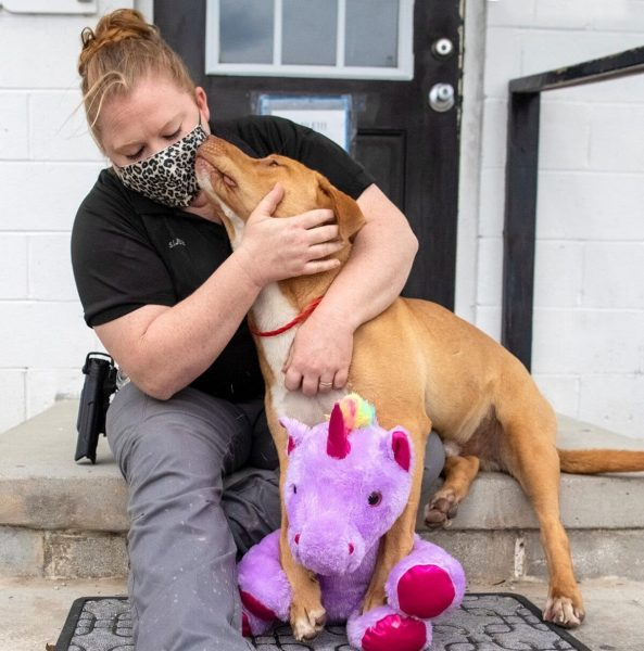"""A photo of Sisu and his purple friend shared by the shelter said, """"This is what happens when you break into the Dollar General consistently to steal the purple unicorn … but then get Animal Control called to lock you up for your B&E and larceny."""""""