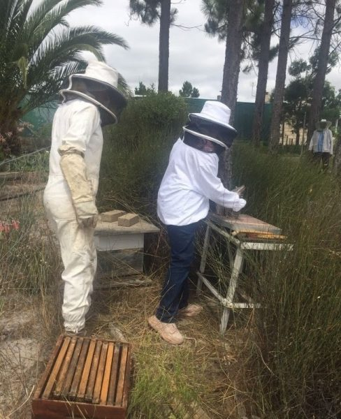 Sana and her sisters collect honey from one of their 150 hives on the Cape's West Coast.